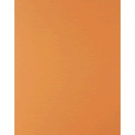 CARTULINA FASHION 65 X 50 NARANJA