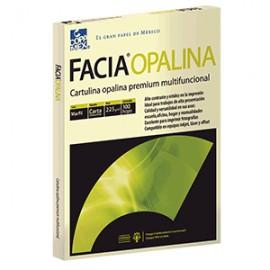 CARTULINA OPALINA MARFIL CARTA 100 HOJAS COPAMEX