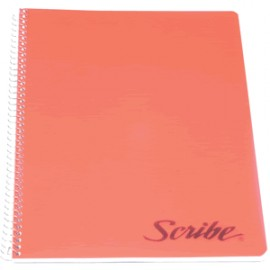CUADERNO PROFESIONAL SCRIBE CLASICO CUADRO GR 100H